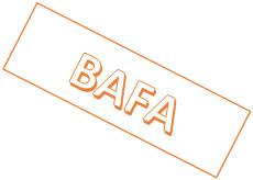 Zertifizierungen BAFA zertifizierter Berater